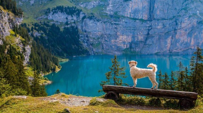 bergsee-beautiful-lake